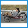Outdoor unique bike adult recumbent trike frame sale