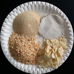 Dehydrated garlic powder 100-120mesh