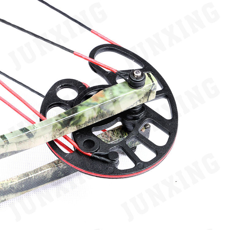 compound bow 3.jpg