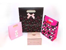 2015 professional custom cheap shopping gift paper bag