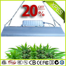 China Foshan 300w integrated led grow lights for tomatoes