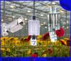 Zhejiang Hangzhou factory1000w hps grow light kit ( ballast + reflector + bulbs) for hydroponics lighting
