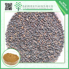 Manufacturer high quality Tartary Buckwheat Extract 70% Flavones with free sample