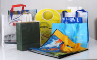 Good quality PP woven shopping bag for variety use