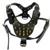 Gold Spikes Studded leather dog harness leather harness for dogs