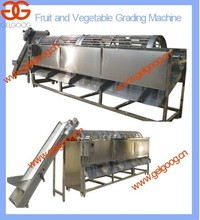 Vegetable Factory Type Vegetable Sorting Machine |Potato Onion Cleaning and Grading Machine