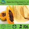 Spray dried papaya juice concentrate powder