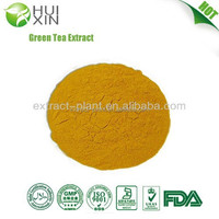 China Supplier Free sample high quality Green Tea Extract 80%