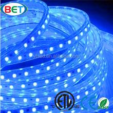 LED light 110V 220V CE & RoHS SMD5050 Waterproof IP67 led flexible strip led stripe stripe led