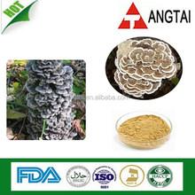 Natural Yunzhi Extract/Coriolus Mushroom Extract 10%, 20%, 40% Polysaccharides