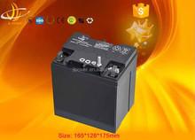 12v24ah storage agm battery yuasa battery UPS/Solar battery