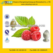 GMP Factory Supply Pure Raspberry Ketone