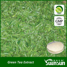 high quality green tea extract powder tea extract