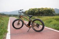 1:1 PAS battery operated electric bicycles CE certificated