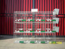 poultry farm cage/best selling products pigeon breeding cage/ chicken poultry cage