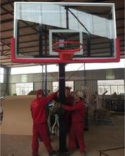 Standard Adjustable Inground Basketball Stand