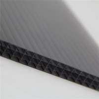 polycarbonate sunlight panel, sun panel polycarbonate roofing twinwall sheet