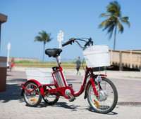 adult mini electric trike powered 3 wheel electric bicycle by lithium battery