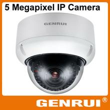 2014 High Quality Waterproof IP65 Outdoor Dome 5 Megapixel Digital IP Camera