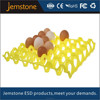 PET Egg Container/Plastic Egg Tray