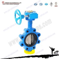 API standard Worm gear operated lug stainless steel butterfly valve dn250