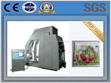 China Ruian high speed 4 colours film plastic bag roll printing machine