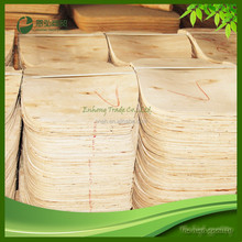 Bent plywood chair indoor plywood Wholesale in China