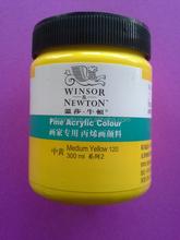 fine quality 300ml Winsor & newton artist acrylic colour