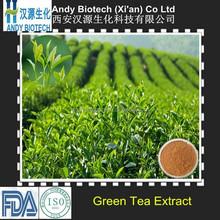 Organic factory green tea extract 98% tea polyphenol