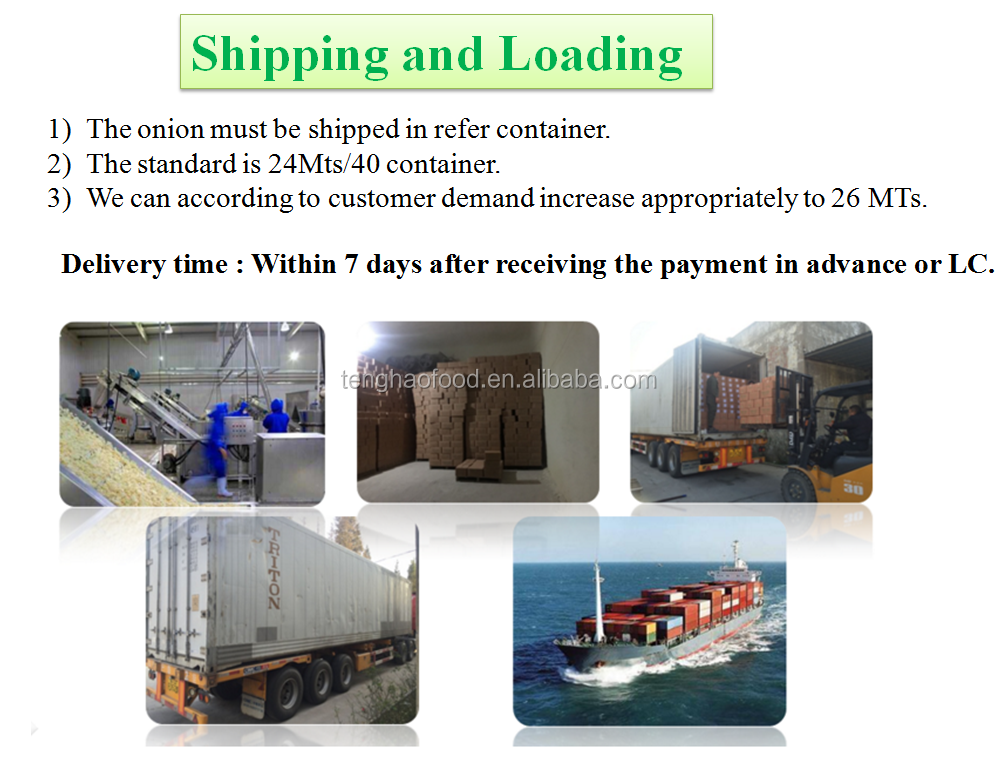 shipping and loading.png