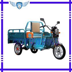 580W Three Wheel Motorcycle