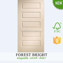 Fashion 5 Panel white Internal Molded Skin Door