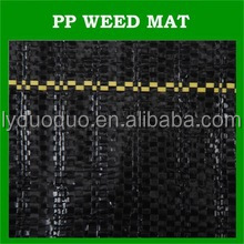 biodegradable weed barrier ground cover landscape fabric