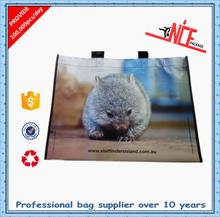 Manufacturer gift shopping bag trolley shopping bag tote shopping bag