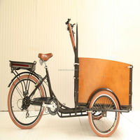 2015 hot sale danish family kids 3 wheel electrical bike lady cargo bicycle tricycle