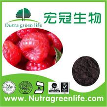 High quality Raspberry Extract 10:1