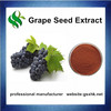 Water Soluble Grape Seed Extract,Organic Grape Seed Extract