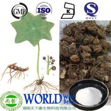 Sinopodophyllum emodi parede Podophyllin extrato 98% Podophyllin pó Podophyllacea Podophyllin 98%