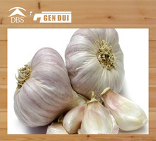 Natural health fresh normal white garlic