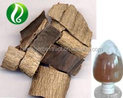 100% Natural Eucommia Bark Extract powder