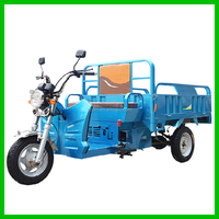 Eletric Tricycle 125CC Cargo Box Tricycle for Sale