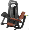 Goods of every description are available Seated Leg Curl (plate)