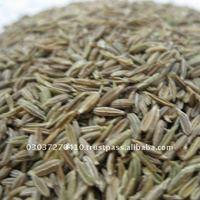 Pakistan Quality New Crop White Cumin Seed