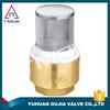 butt weld check valves three way high pressure lockable in delhi filten ppr distributors non slam with NPT threaded connection