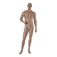 Realistic fashion masculine male mannequin, male sex model, male model