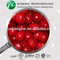 100% natural de cereza acerola p. E.