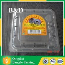 PET/PVC/PP/PS cheap blister disposable plastic fruit tray