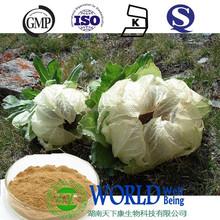 top quality saussurea involucrata extract 10:1 powder healthy supplement Snow Lotus flavonoids saussurea involucrata extract