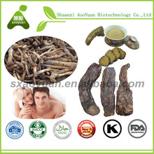 Herba Cistanche Root Cistanche Tubulosa Extract for Male/Female