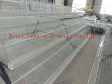 TAIYU Full Automatic Poultry Battery Cages (Welcome to Talk With Our Local Agents)
